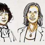 夏彭提耶、道納CRISPR基因編輯獲獎 張鋒成遺珠! 解析2020諾獎化學獎技術:CRISPR/Cas系統的前世、現在與未來 (圖/改自Nobel Prize 官方網站)